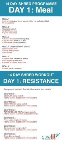 14 Day Shred Programme